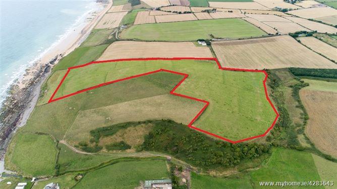 Main image for 26 Acres Approx. Ballycroneen East , Cloyne, Cork