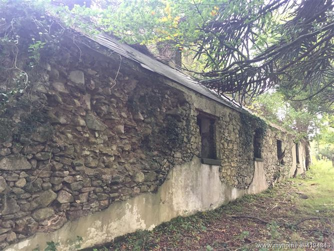 Ann Mount, Derelict Farm House on C. 2.17 Acres / 0.88 HA., Glenasmole, Bohernabreena, Dublin