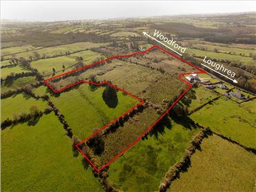 Main image of c.16 Acres at Ballynamona, Kylebrack, Loughrea, Galway