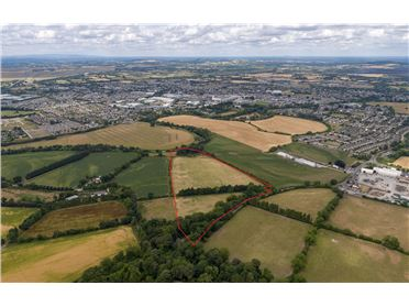 Main image of 20 Acres (Zoned), Great Connell, Newbridge, Kildare
