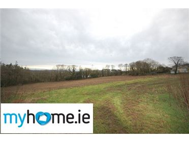 Photo of Circa. 2 Acre Site, Butlerstown, Co. Waterford