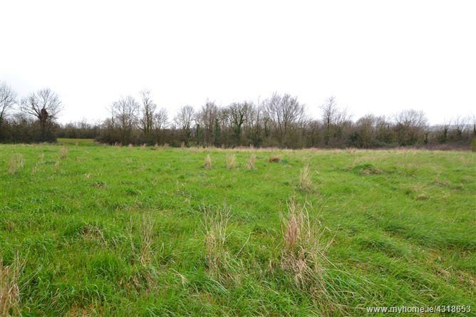 Main image for Ballyoughna, Ballygarrett, Wexford