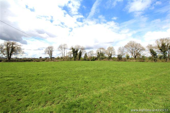 Lamagh, Newtownforbes, Longford