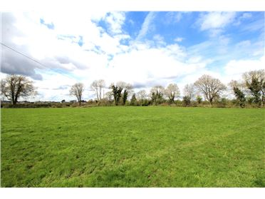 Photo of Lamagh, Newtownforbes, Longford