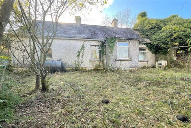 Main image for Garvery Moyne Longford Co Longford N39PO42 – 2 Derelict houses & c 0.84 Acres of Land