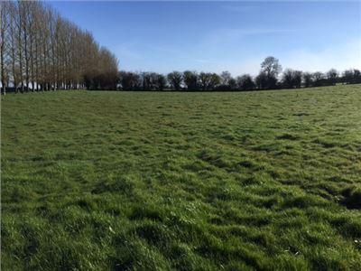 Stonepark, Ballyneety, Limerick