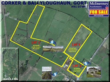 Main image of Corker, Gort, Galway