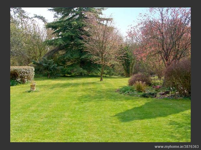Main image for The Cottage Pet,Whitchurch, Hampshire, United Kingdom