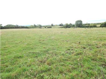 Main image of C. 28 Acres At, Drewscourt East, Ballyagran, Kilmallock, Co Limerick