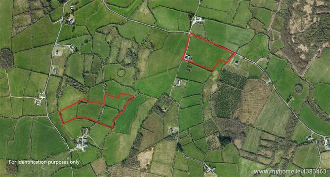 Main image for Lands at Tiernan & Rakelly, Kilbrone, Emyvale, Monaghan