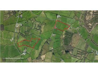 Image for Lands at Tiernan & Rakelly, Kilbrone, Emyvale, Monaghan