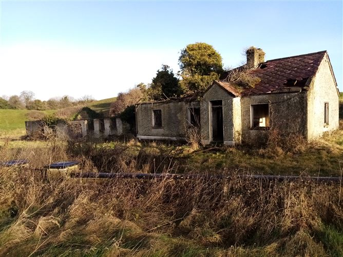 Main image for derelict cottage at dalgan, Geashill, Tullamore, Offaly