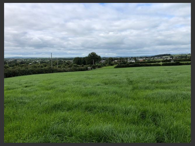 Main image for c. 0.75 acre site, Moneygall, Offaly