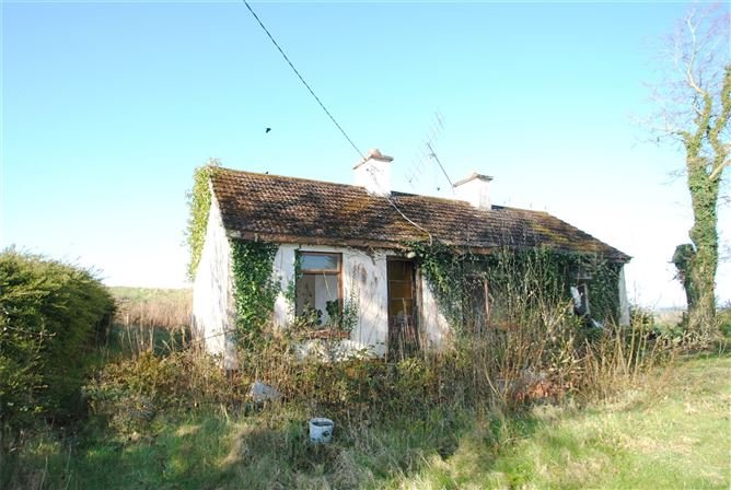 Main image for Approx 1.09 Acres & Cottage,Montevideo Road,(Clybanane),Roscrea,Co Tipperary