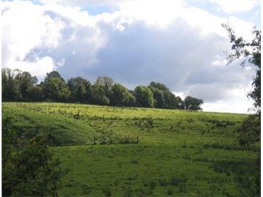 Main image of Drumalee, Cavan, Cavan Town, Co. Cavan