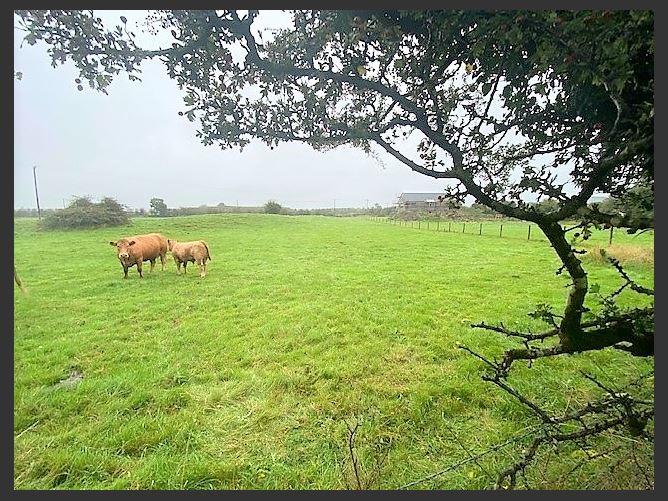 Main image for Belcarra, Castlebar, Mayo