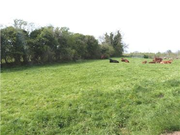 Photo of Lavistown, Clara, Kilkenny