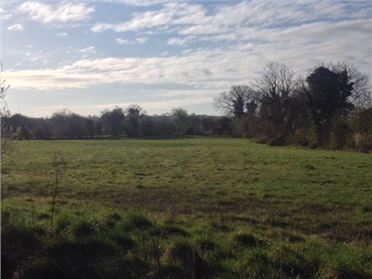 Photo of Site 1 to 3 Acres, Tippeenan, Kilcullen, Kildare
