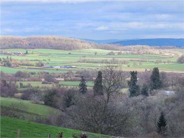 Main image of The Granary,St Margarets, Herefordshire, United Kingdom