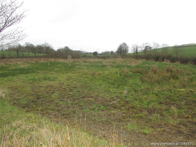 Photo of Derrylavan, Carrickmacross, Monaghan