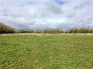 Main image of 10 Acres at Cloneen, Ballybrittas, Laois