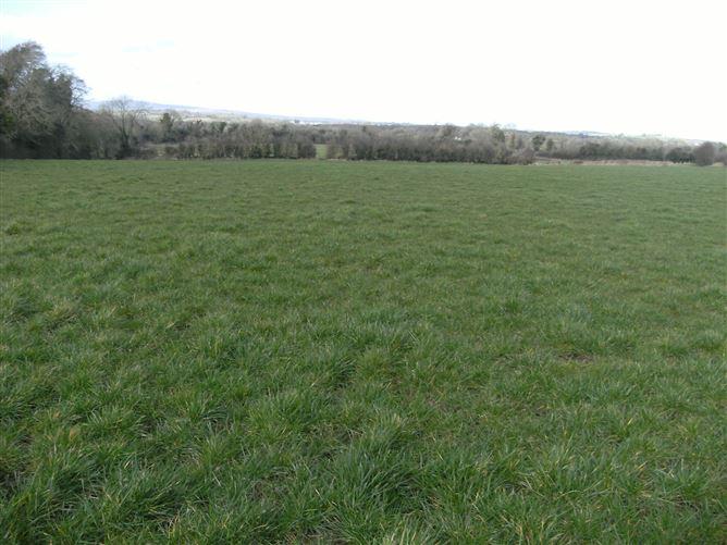 Main image for Skeagh, Aghaboe, Ballacolla, Abbeyleix, Laois