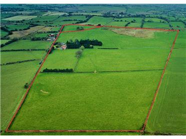 Main image of Davidstown, Mullingar, Westmeath