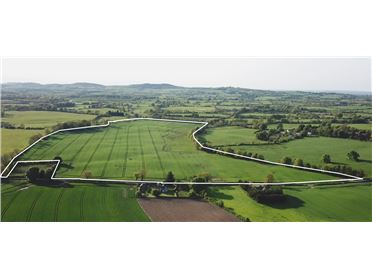 Main image of 67 ACRES - MARTINSTOWN CROSSAKIEL, Kells, Meath