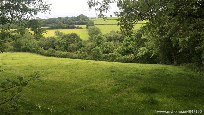 Glenballyvalley, Tullogher, Kilkenny