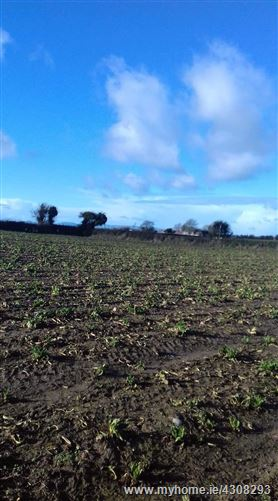 Main image for Glenreagh, Graine , Urlingford, Kilkenny