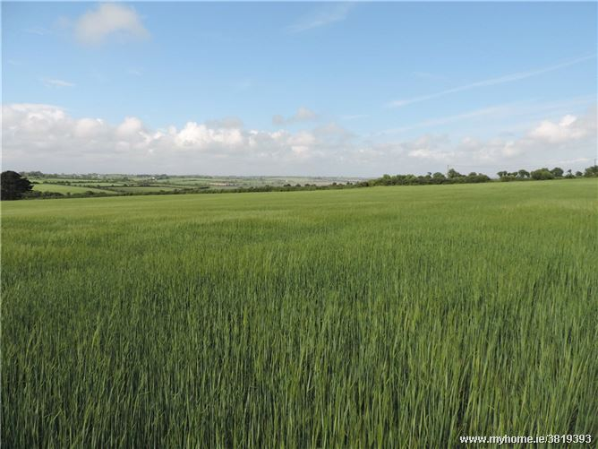 Booley Hill On 28.66 Acres, Fethard On Sea, Co. Wexford