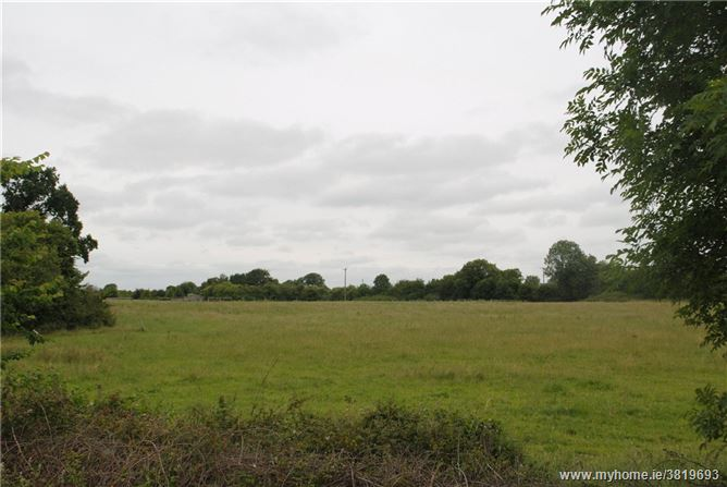 Approx. 5.36 Hectares/13.25 Acres, Cloughmoyle, Shinrone, Birr, Co Offaly