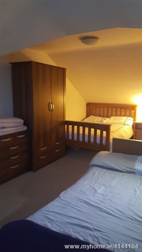 Maelruans friendly host, Tallaght, Dublin 24