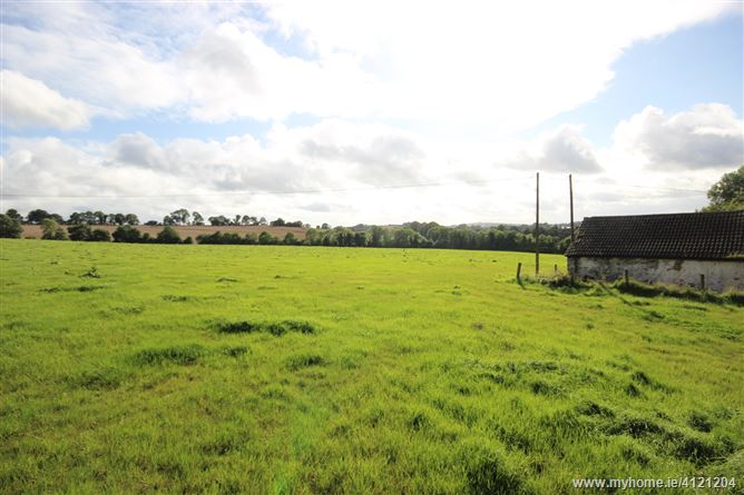 Photo of Nr. Brannockstown, Naas, Brannockstown, Co. Kildare - c. 25 acres