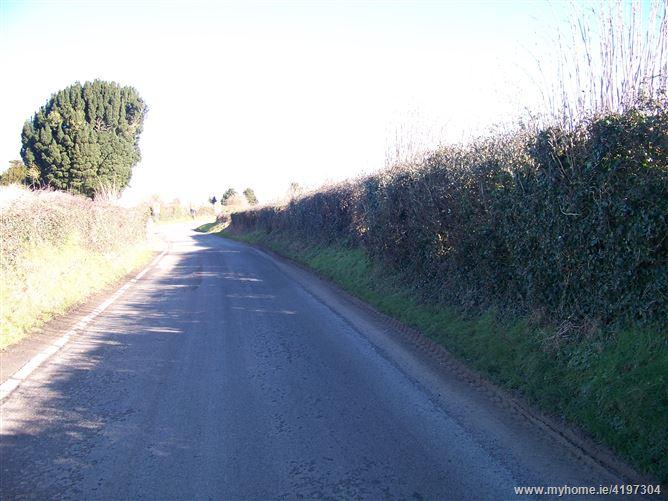 Site for sale 12,434 (5.04ha), Clonalvy, Meath