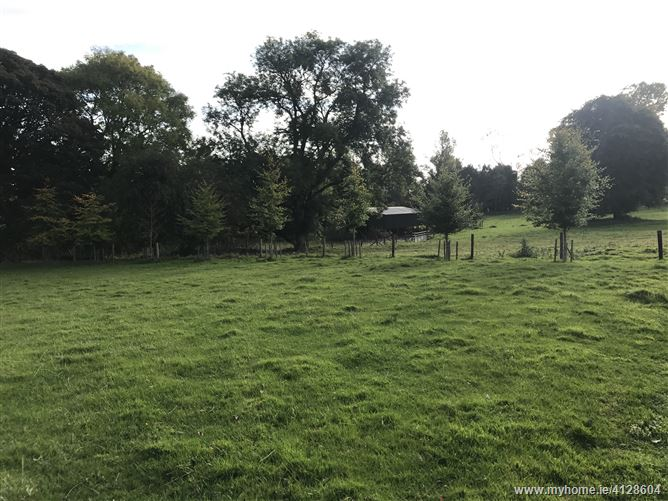 Silliot Hill, Kilcullen, Co. Kildare - c.16 acres