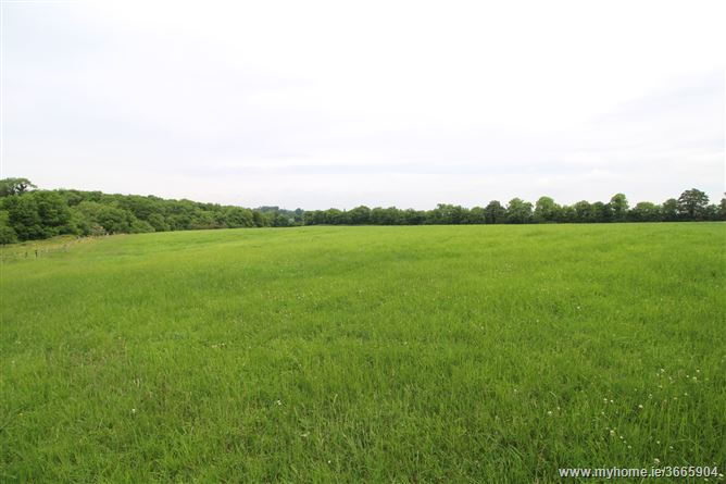 Burtonstown, Kentstown, Meath
