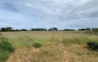 6.28 Acres At Ballyguile Beg, Co. Wicklow