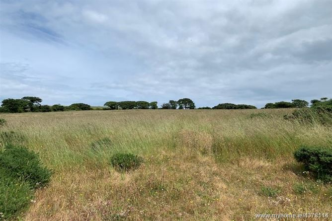 Image for 6.28 Acres At Ballyguile Beg, Co. Wicklow