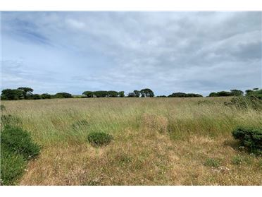 Main image of 6.28 Acres At Ballyguile Beg, Co. Wicklow