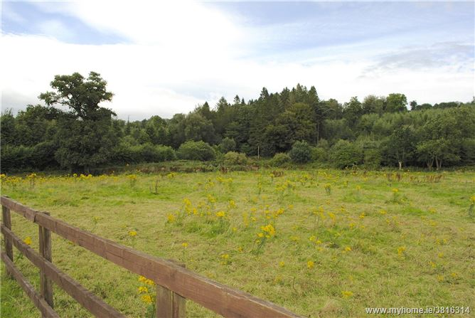 Large Site For Sale At Ballyrafter, Lismore, Co Waterford