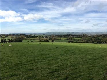 Photo of 1.3 Acre Site, Seskinryan, Bagenalstown, Co Carlow