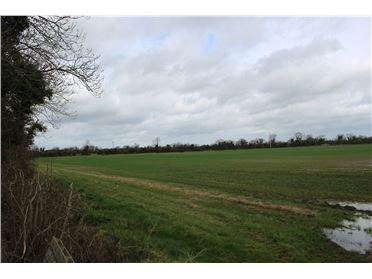 Main image of C. 6.02 Hectares (c. 14.8 Acres) Mabestown, The Ward, Meath