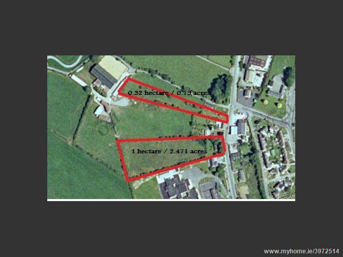 Photo of Ladyswell, Thomastown, Kilkenny