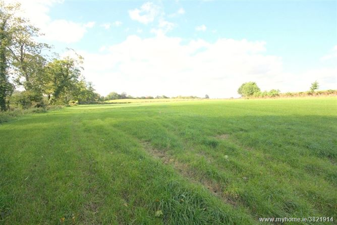 C. 3.1 Acres At, Louth Hall, Tallanstown, Co. Louth