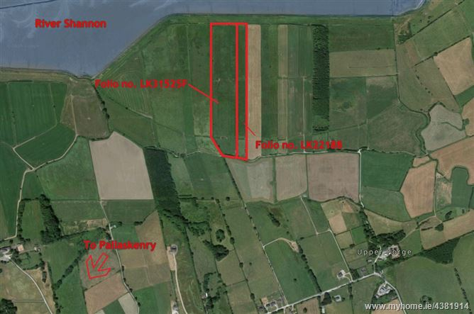 Main image for Agricultural Land, Ballydoole, Pallaskenry, Limerick