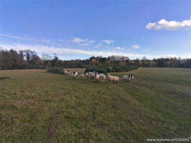 Main image for Ballinacoola, Kilnahue, Gorey, Wexford