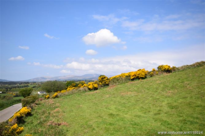 Main image for Moyne, Tinahely, Wicklow