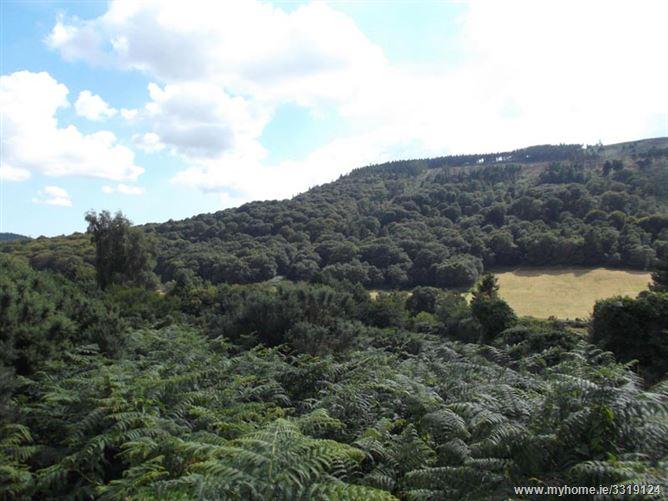Brockagh, Glendalough, Wicklow