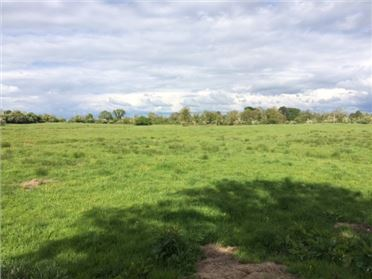 Main image of 31 ACRES - KILTOOME, Trim, Meath